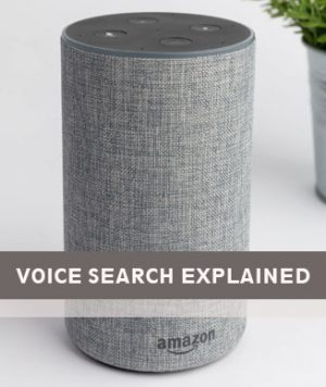 Voice Search Website Optimisation Explained